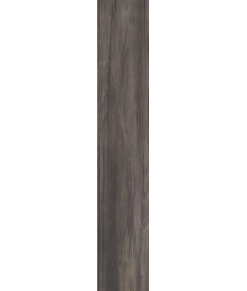 Плитка напольная DOLPHIN COAL AGED RETT. 20X120